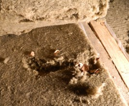 Защита минваты. Ограничение факторов, разрушающих утеплитель