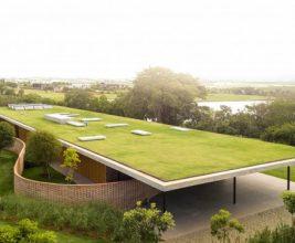 Утвержден национальный стандарт озеленяемых и эксплуатируемых крыш
